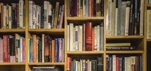 8 livros para baixar gratuitamente