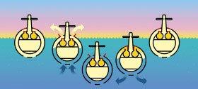 O segredo do submarino. Ilustração:Milton Rodrigues Alves