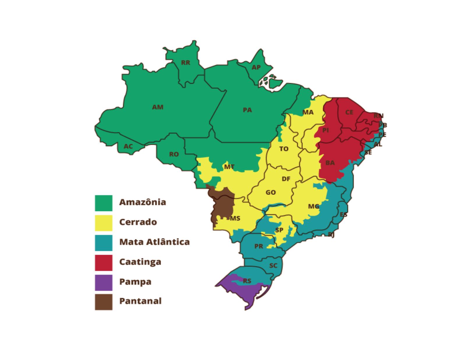 Mapeando os biomas brasileiros
