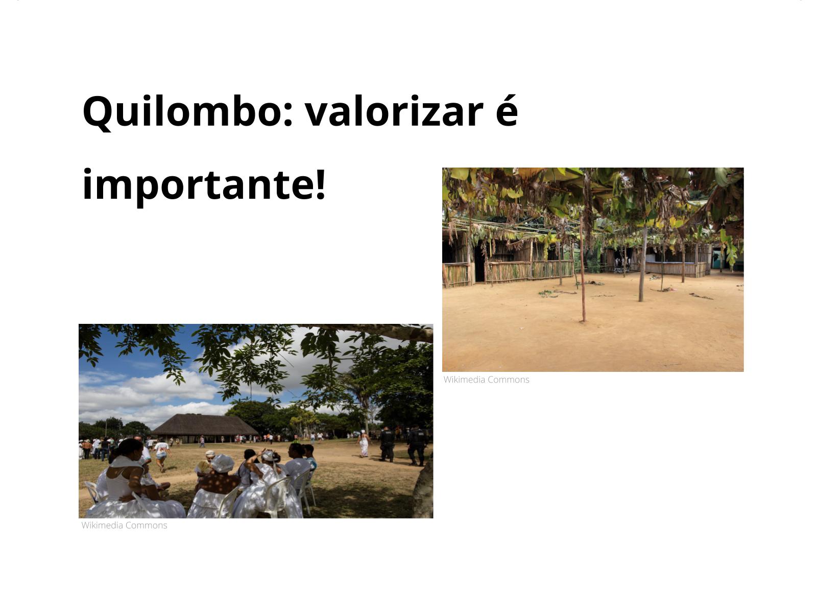 Quilombos: em busca do respeito!
