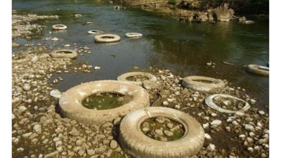 Poluição de rios: causas e consequências