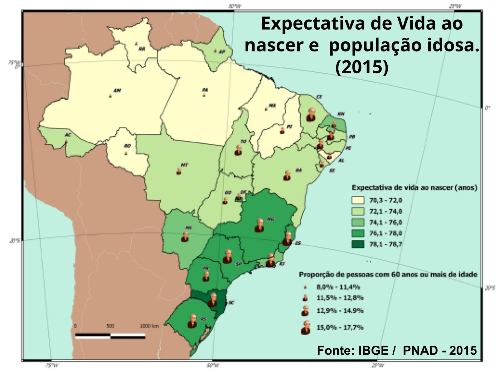 Mapas temáticos do Brasil: leitura, interpretação e produção