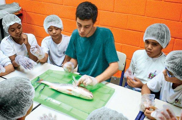 O estudo da anatomia dos peixes e a produção de fotos-legendas foram intercaladas à pesquisa. Arquivo pessoal/Roberto Leandro dos Santos