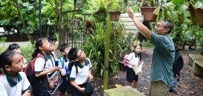 Quatro lições de Educação de Singapura