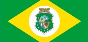 Uma bandeira verde com losângulo amarelo no meio e dentro dele um brasão