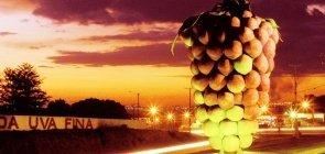 Grande cacho de uva, monumento ao principal produto de Marialva