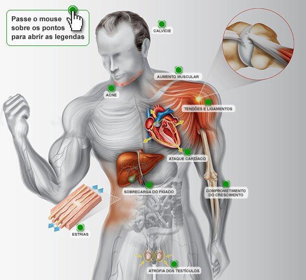 Os efeitos dos anabolizantes no corpo. Infografia: Erika Onodera