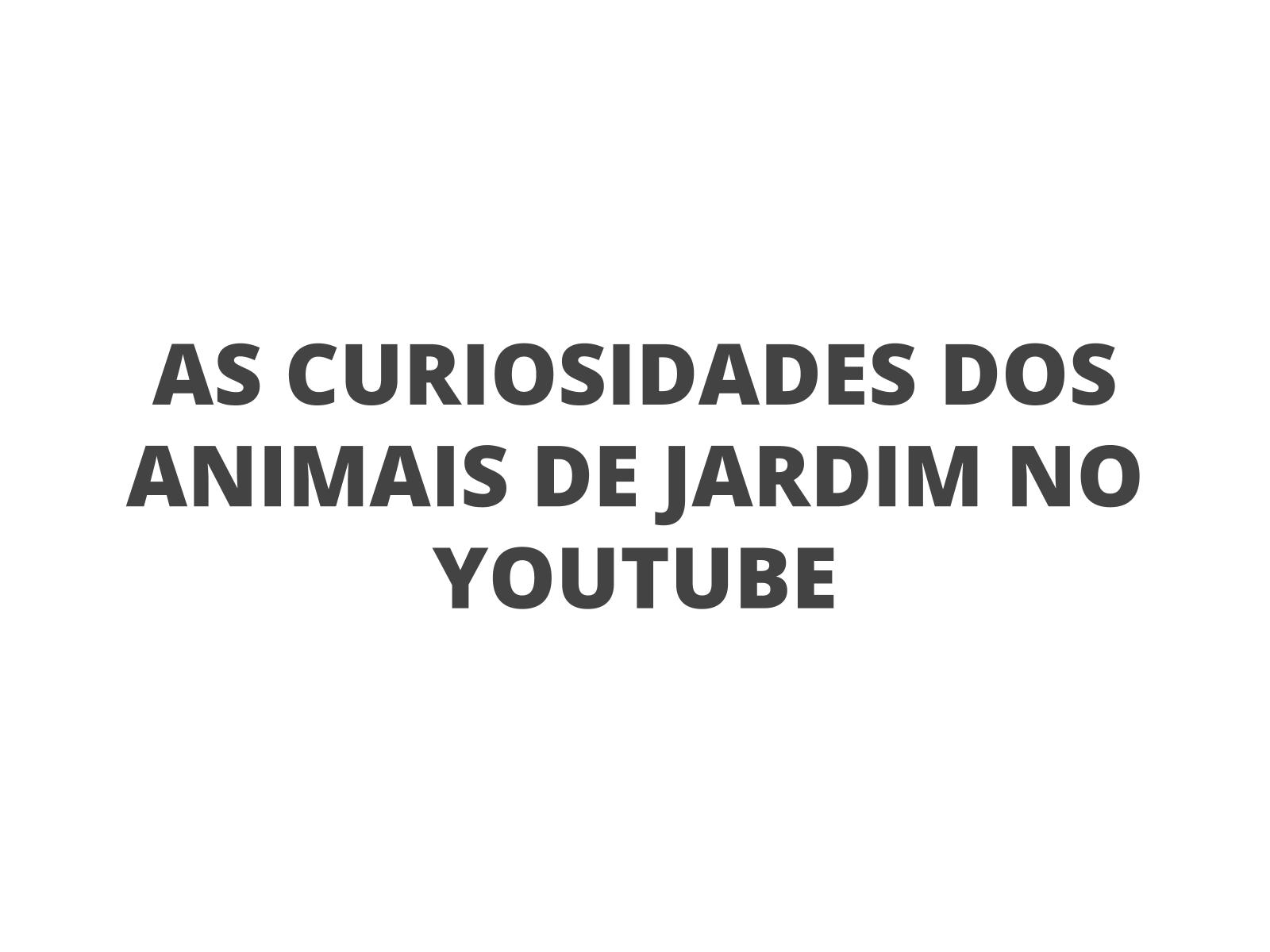 YouTube e oralidade: gravando vídeos sobre curiosidades
