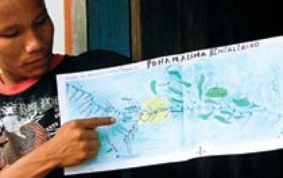 Tradição e inovação na bacia do rio Negro