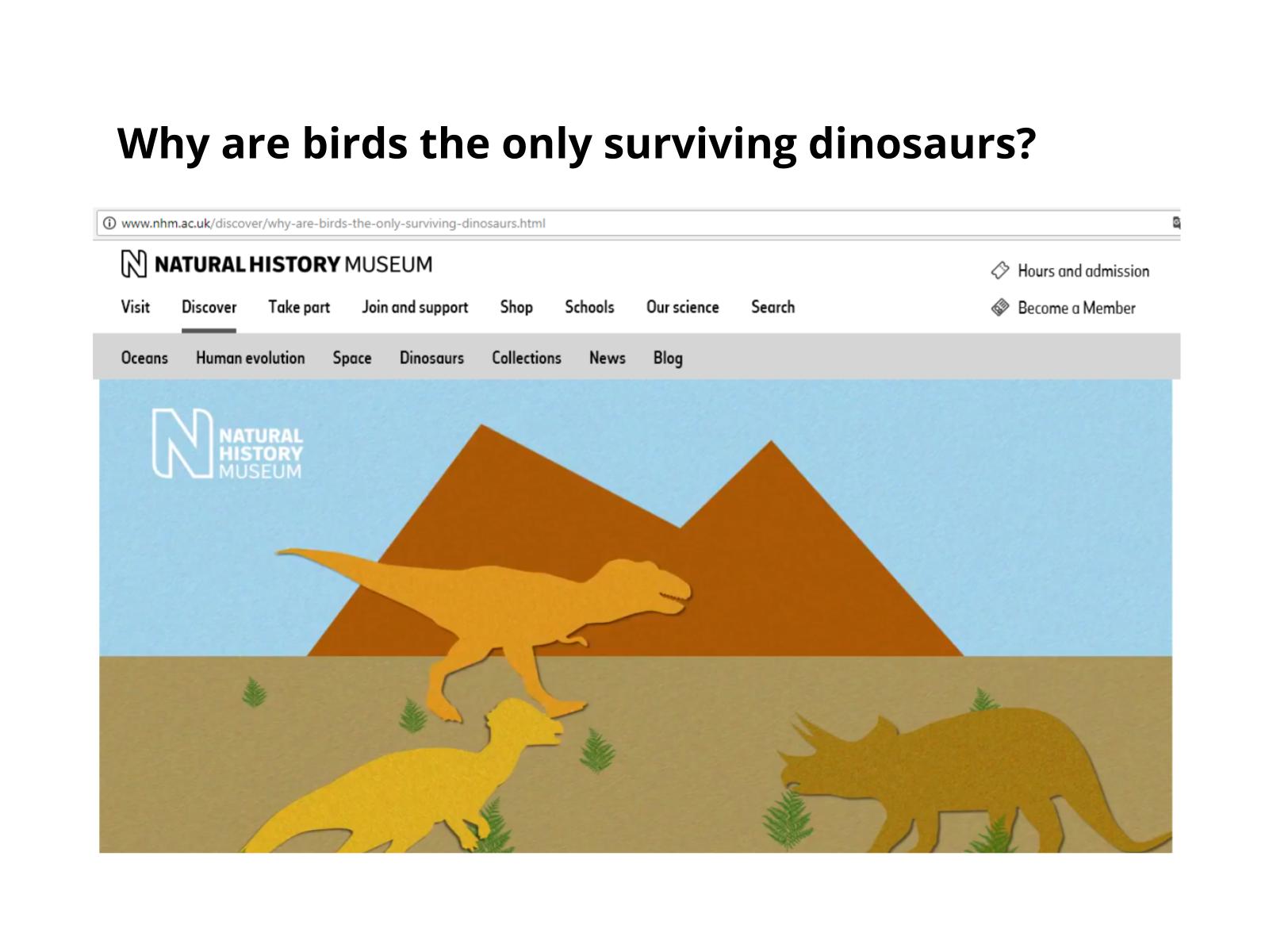Perfil de um dinossauro