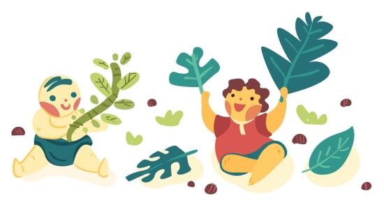 Folhas, galhos, pedras e um pouco mais