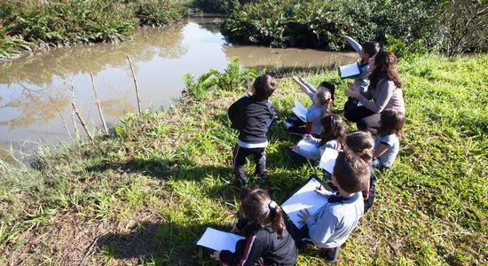 A professora Paula Sestari, educadora do ano de 2014, levou as crianças da pré-escola para conhecer o manguezal que fica no entorno da instituição (Foto: Marcelo Almeida)