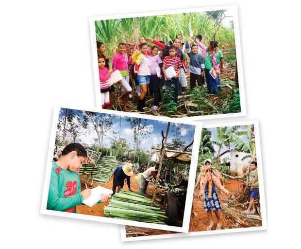 A turma conheceu os campos de mandioca, sisal e cana-de-açúcar e quem trabalha neles. Fotos Arquivo pessoal/Janete Emília Dourado Santos