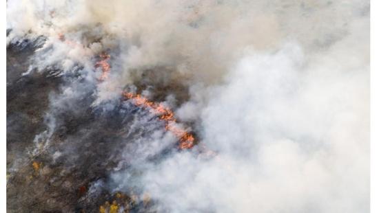 O efeito das queimadas para o clima da Amazônia