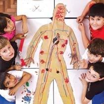 Após a pesquisa em livros e outras fontes, os alunos construíram modelos dos sistemas, como o circulatório do corpo humano.