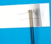 Basta sobrepor duas folhas de papel e desenhar, na mesma posição, dois desenhos semelhantes, mas com pequenas alterações. Ao enrolar e desenrolar rapidamente o lápis na folha superior, a ilusão de movimento é criada. Foto: Fernando Frazão